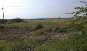 Land for sale near Viramgam